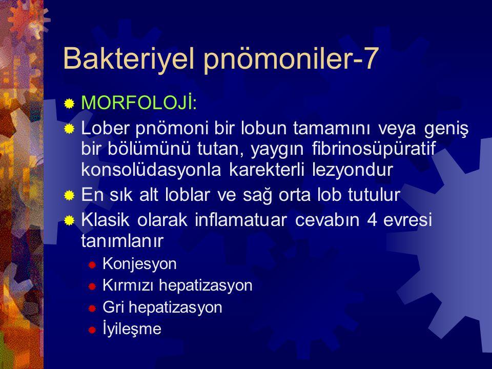 Bakteriyel pnömoniler-7