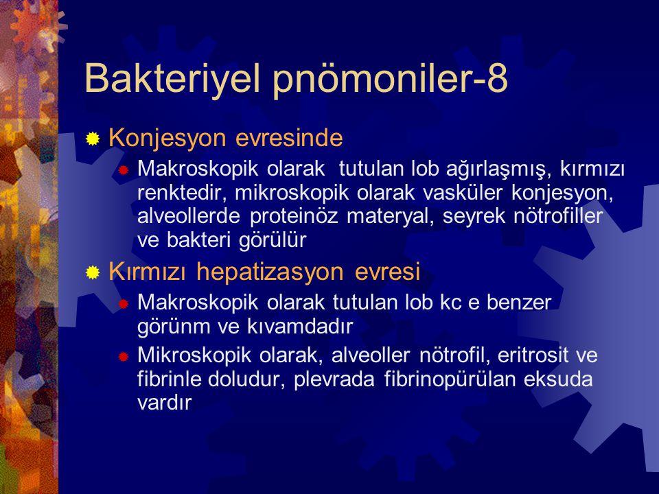 Bakteriyel pnömoniler-8