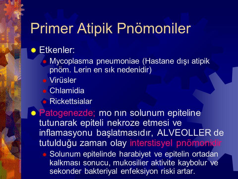 Primer Atipik Pnömoniler
