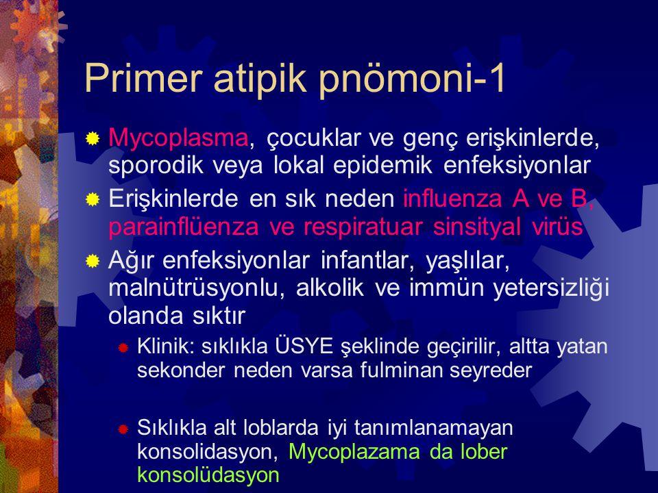 Primer atipik pnömoni-1