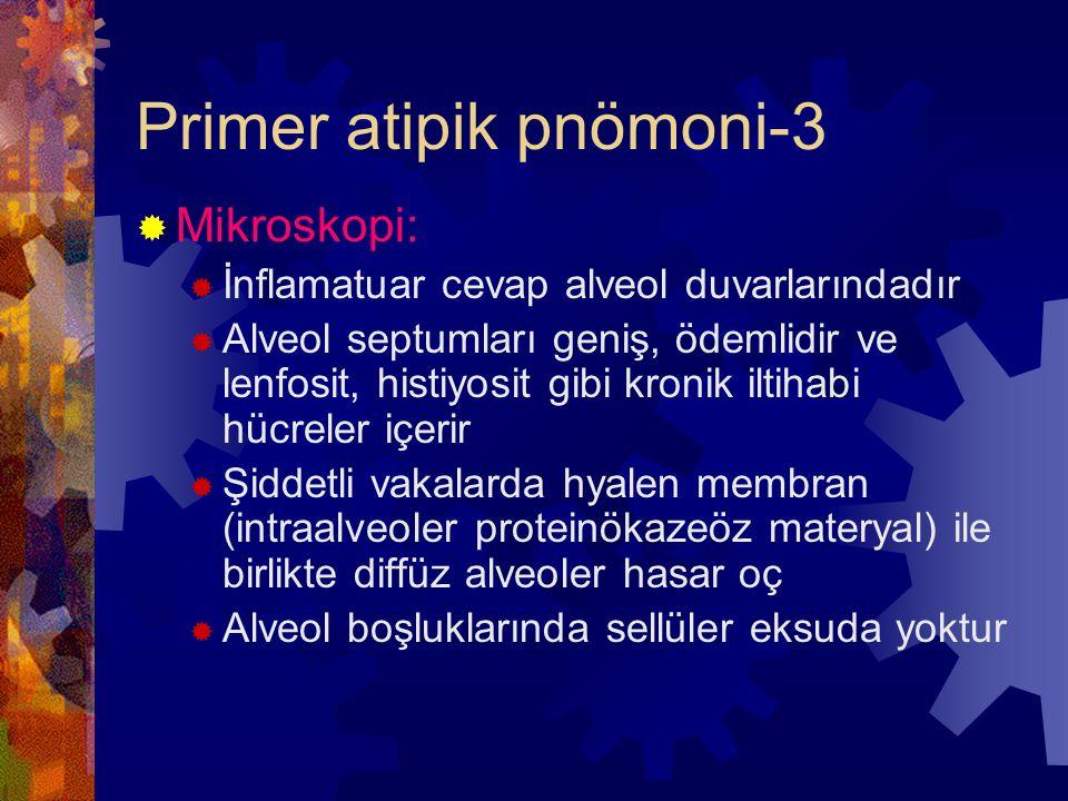 Primer atipik pnömoni-3