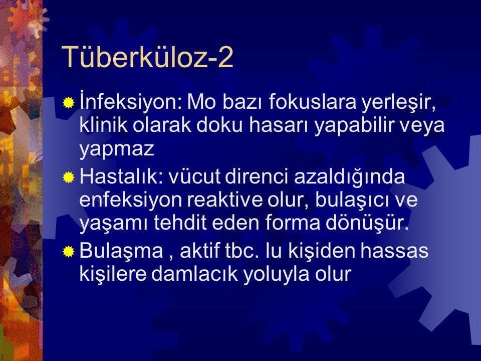 Tüberküloz-2 İnfeksiyon: Mo bazı fokuslara yerleşir, klinik olarak doku hasarı yapabilir veya yapmaz.