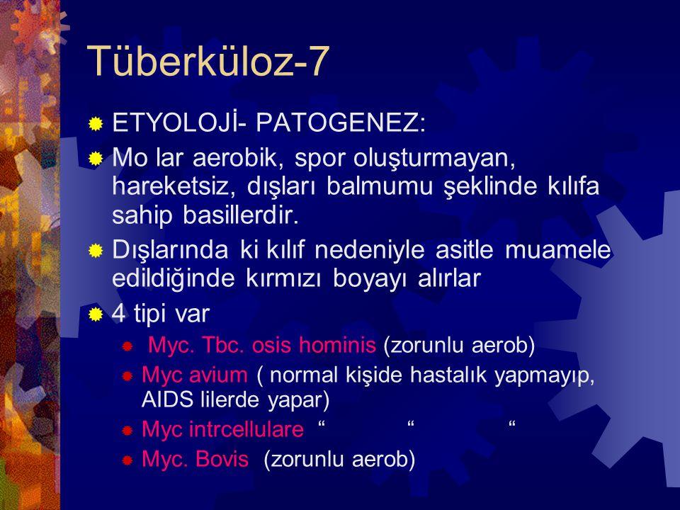 Tüberküloz-7 ETYOLOJİ- PATOGENEZ: