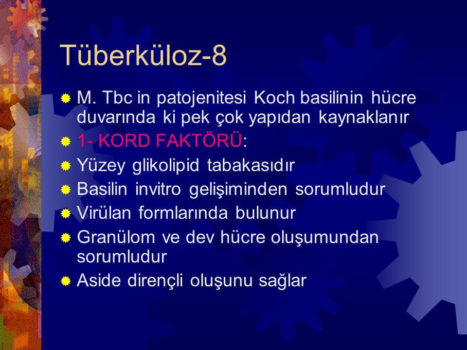 Tüberküloz-8 M. Tbc in patojenitesi Koch basilinin hücre duvarında ki pek çok yapıdan kaynaklanır. 1- KORD FAKTÖRÜ: