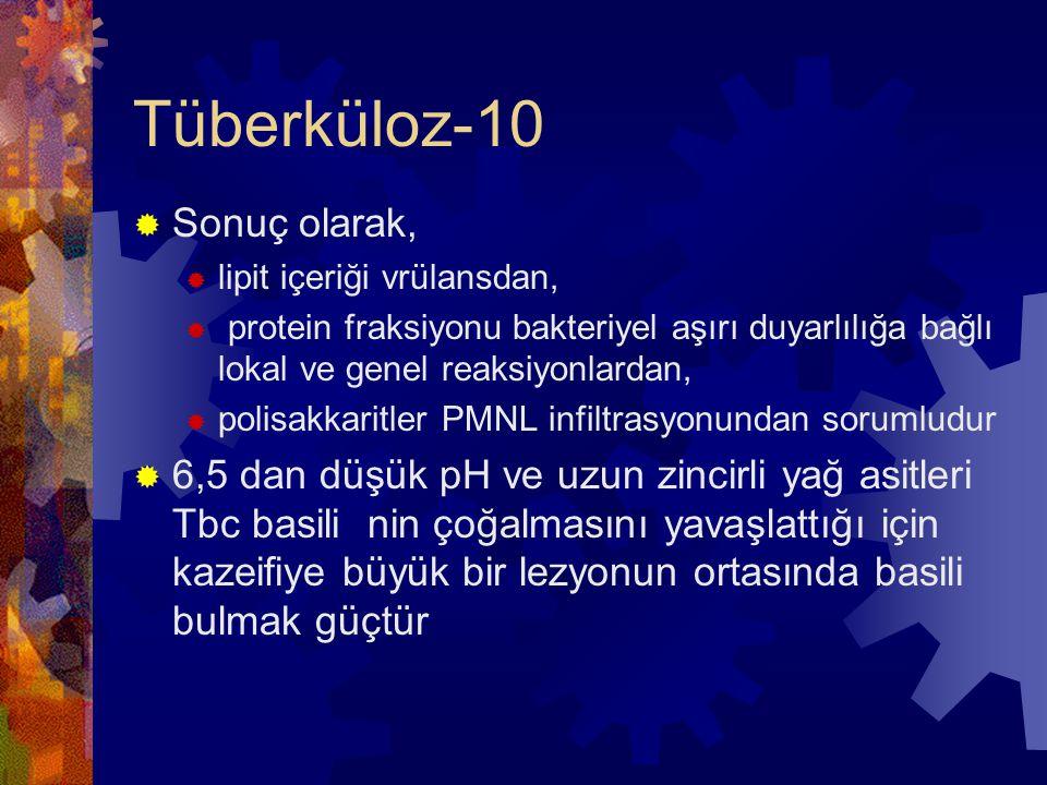 Tüberküloz-10 Sonuç olarak,