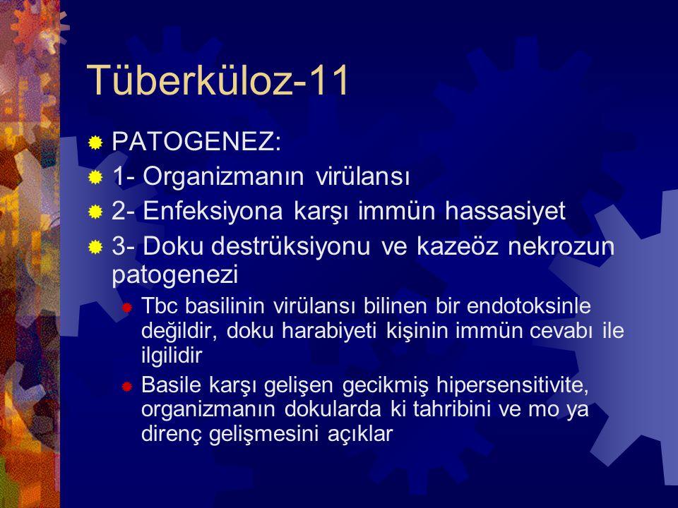 Tüberküloz-11 PATOGENEZ: 1- Organizmanın virülansı
