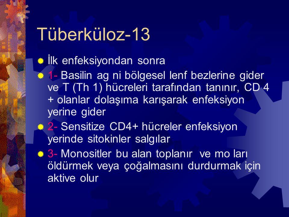 Tüberküloz-13 İlk enfeksiyondan sonra
