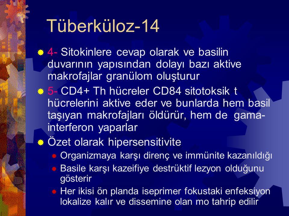 Tüberküloz-14 4- Sitokinlere cevap olarak ve basilin duvarının yapısından dolayı bazı aktive makrofajlar granülom oluşturur.