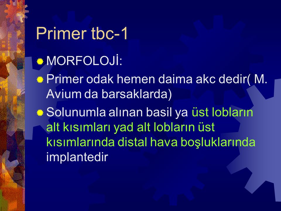 Primer tbc-1 MORFOLOJİ: