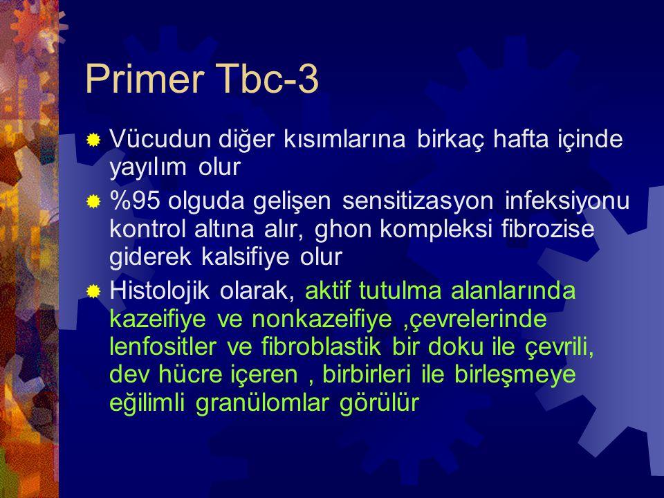 Primer Tbc-3 Vücudun diğer kısımlarına birkaç hafta içinde yayılım olur.