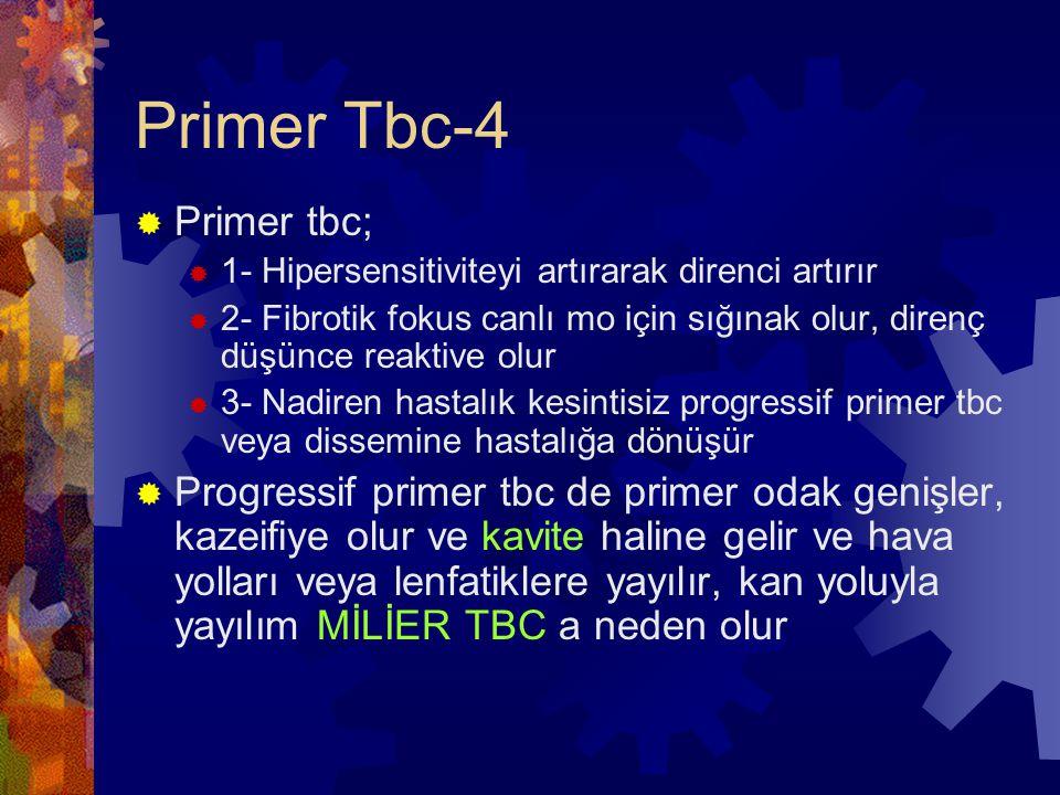 Primer Tbc-4 Primer tbc;