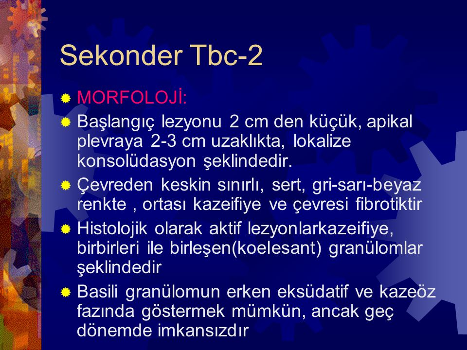 Sekonder Tbc-2 MORFOLOJİ: