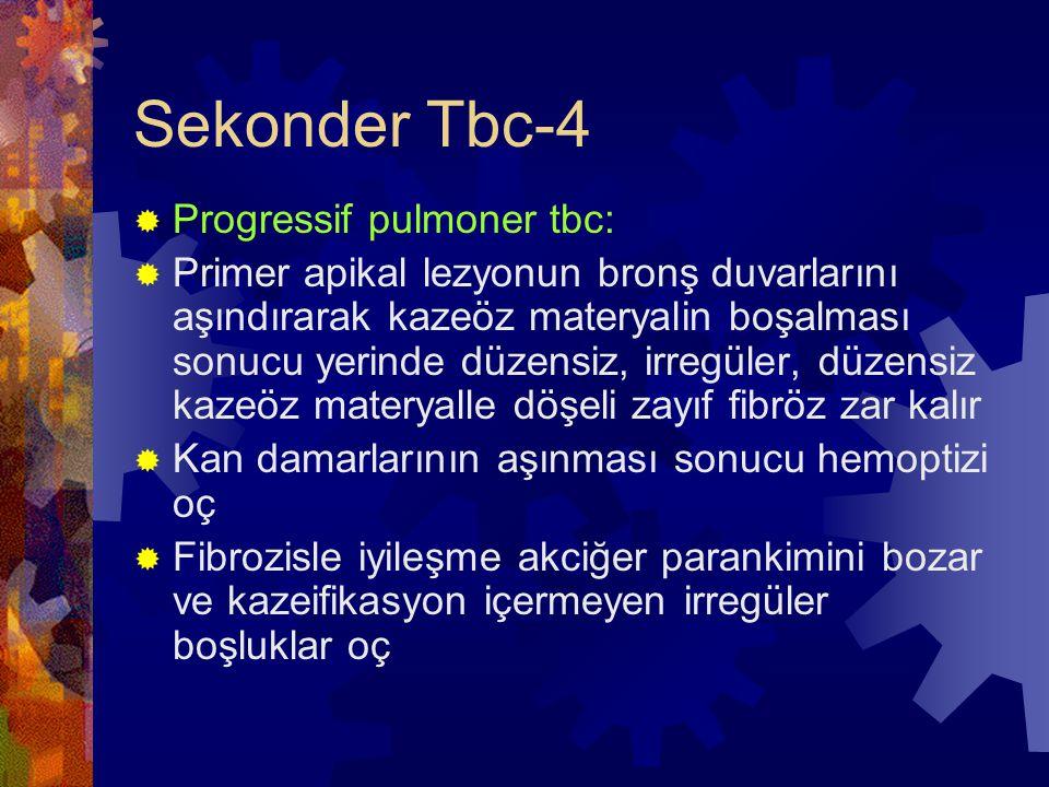 Sekonder Tbc-4 Progressif pulmoner tbc: