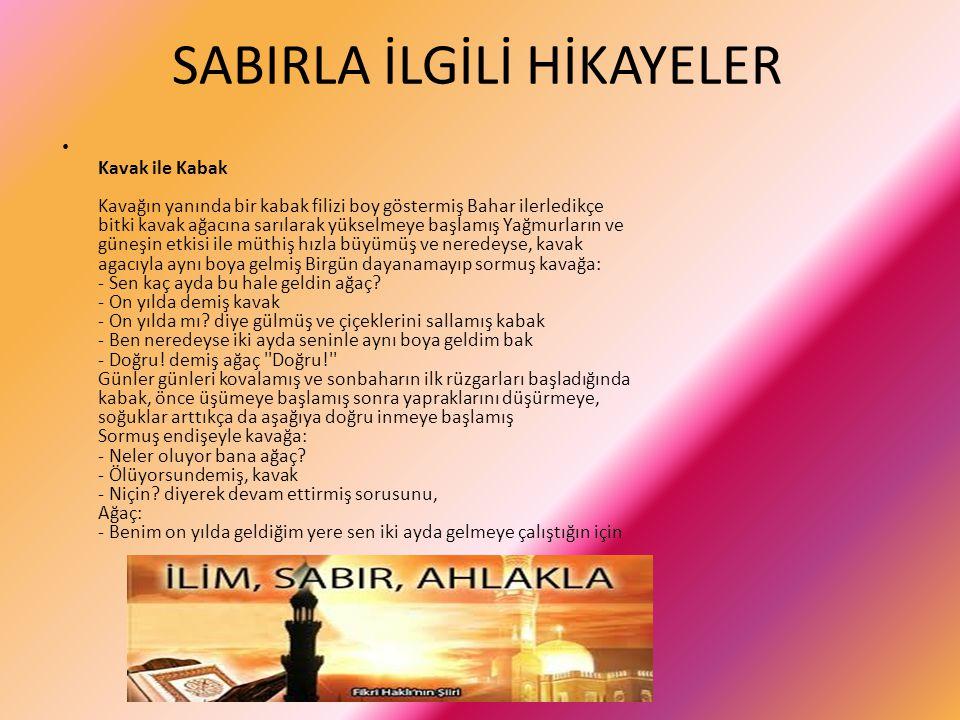 SABIRLA İLGİLİ HİKAYELER