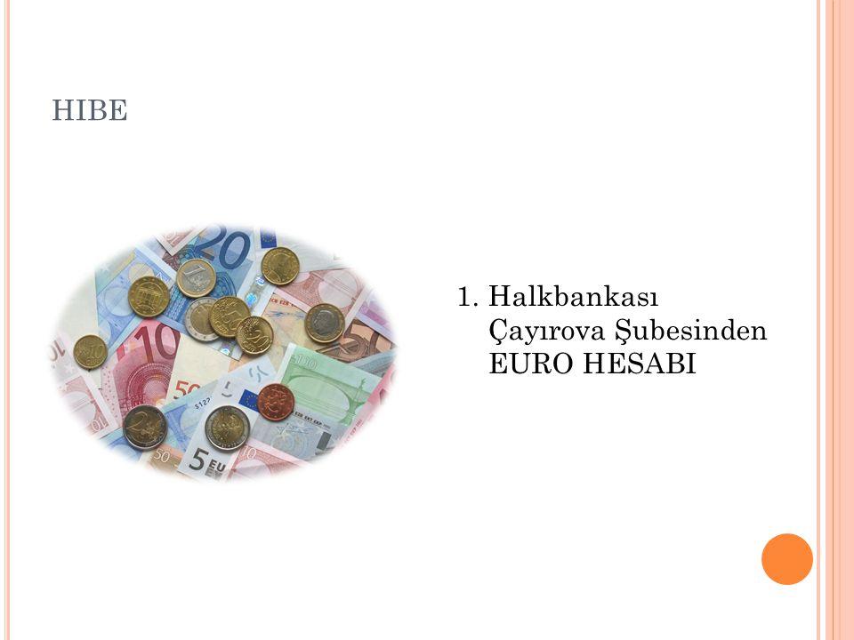 hibe Halkbankası Çayırova Şubesinden EURO HESABI