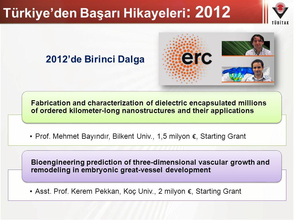 Türkiye'den Başarı Hikayeleri: 2012