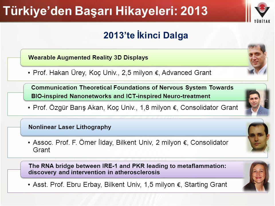 Türkiye'den Başarı Hikayeleri: 2013