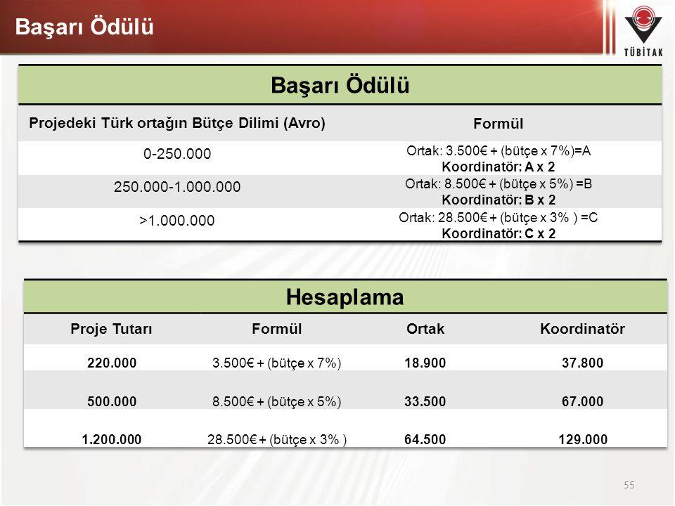 Projedeki Türk ortağın Bütçe Dilimi (Avro)