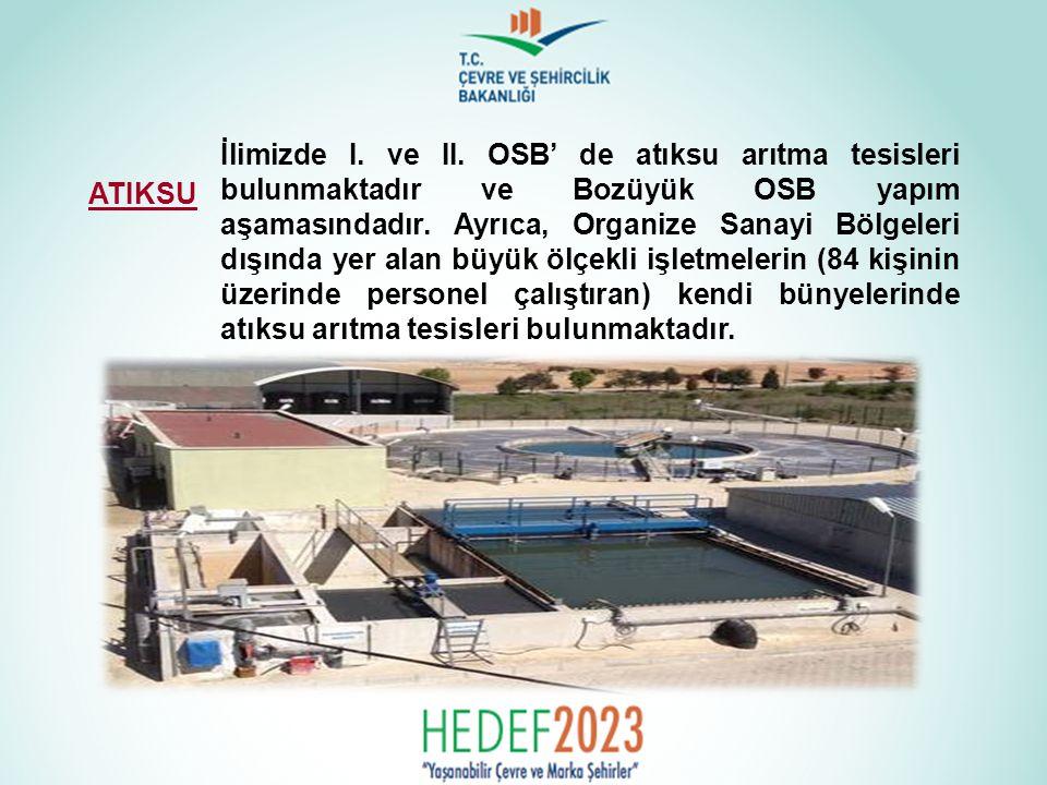 İlimizde I. ve II. OSB' de atıksu arıtma tesisleri bulunmaktadır ve Bozüyük OSB yapım aşamasındadır. Ayrıca, Organize Sanayi Bölgeleri dışında yer alan büyük ölçekli işletmelerin (84 kişinin üzerinde personel çalıştıran) kendi bünyelerinde atıksu arıtma tesisleri bulunmaktadır.