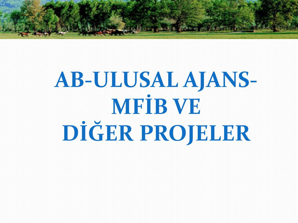 AB-ULUSAL AJANS-MFİB VE