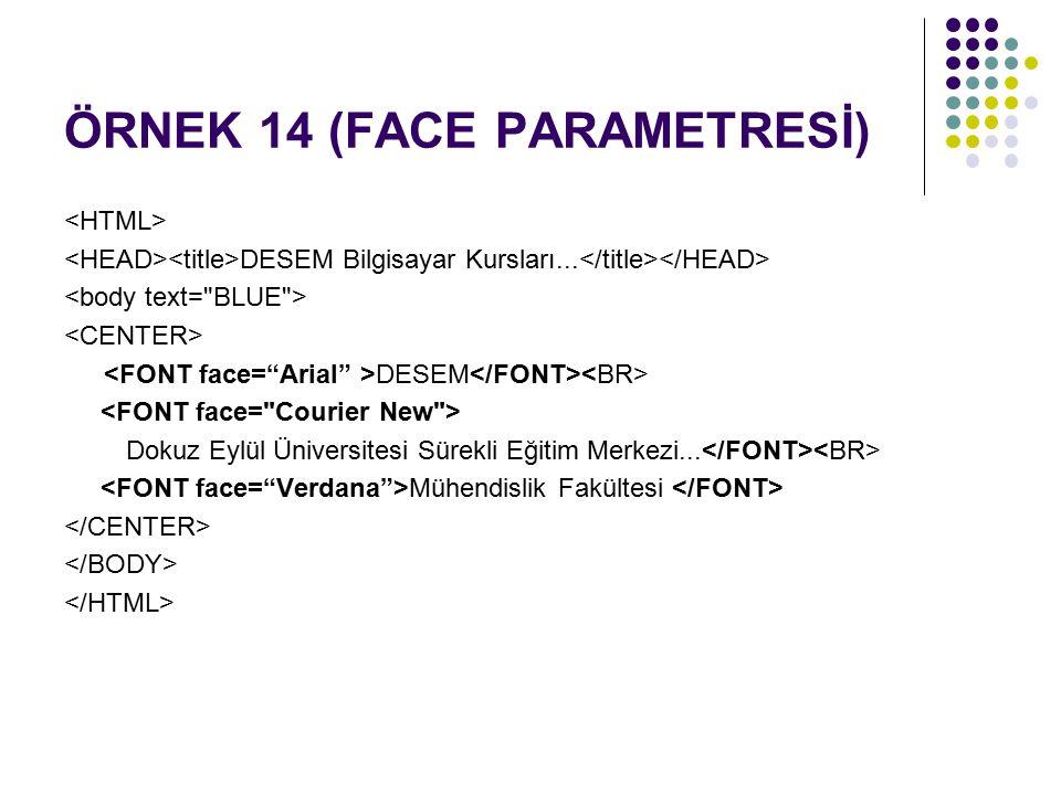 ÖRNEK 14 (FACE PARAMETRESİ)