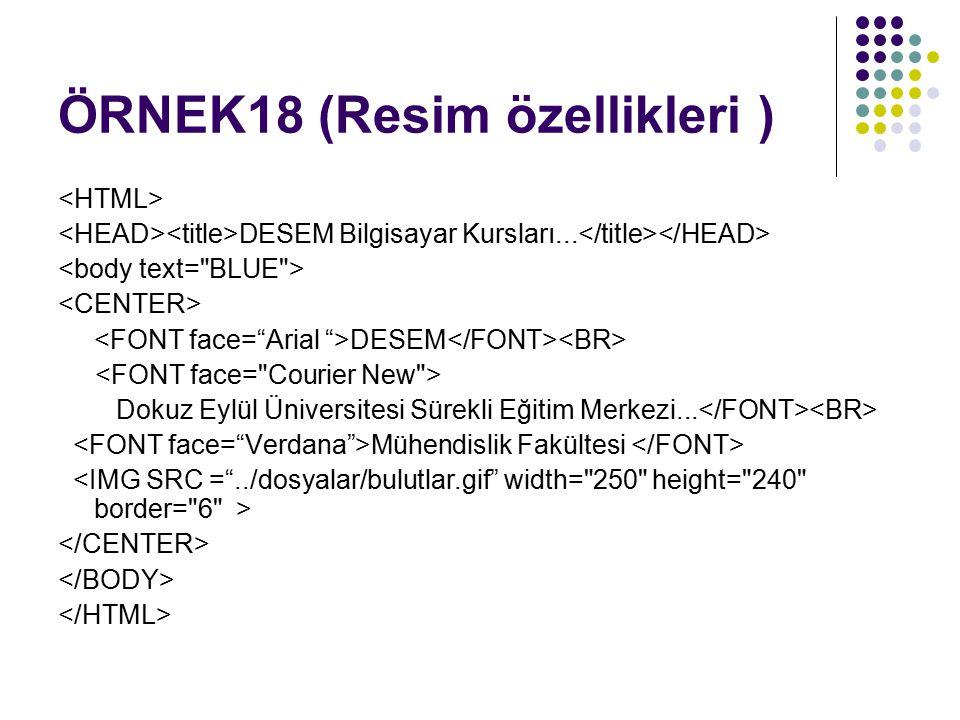 ÖRNEK18 (Resim özellikleri )