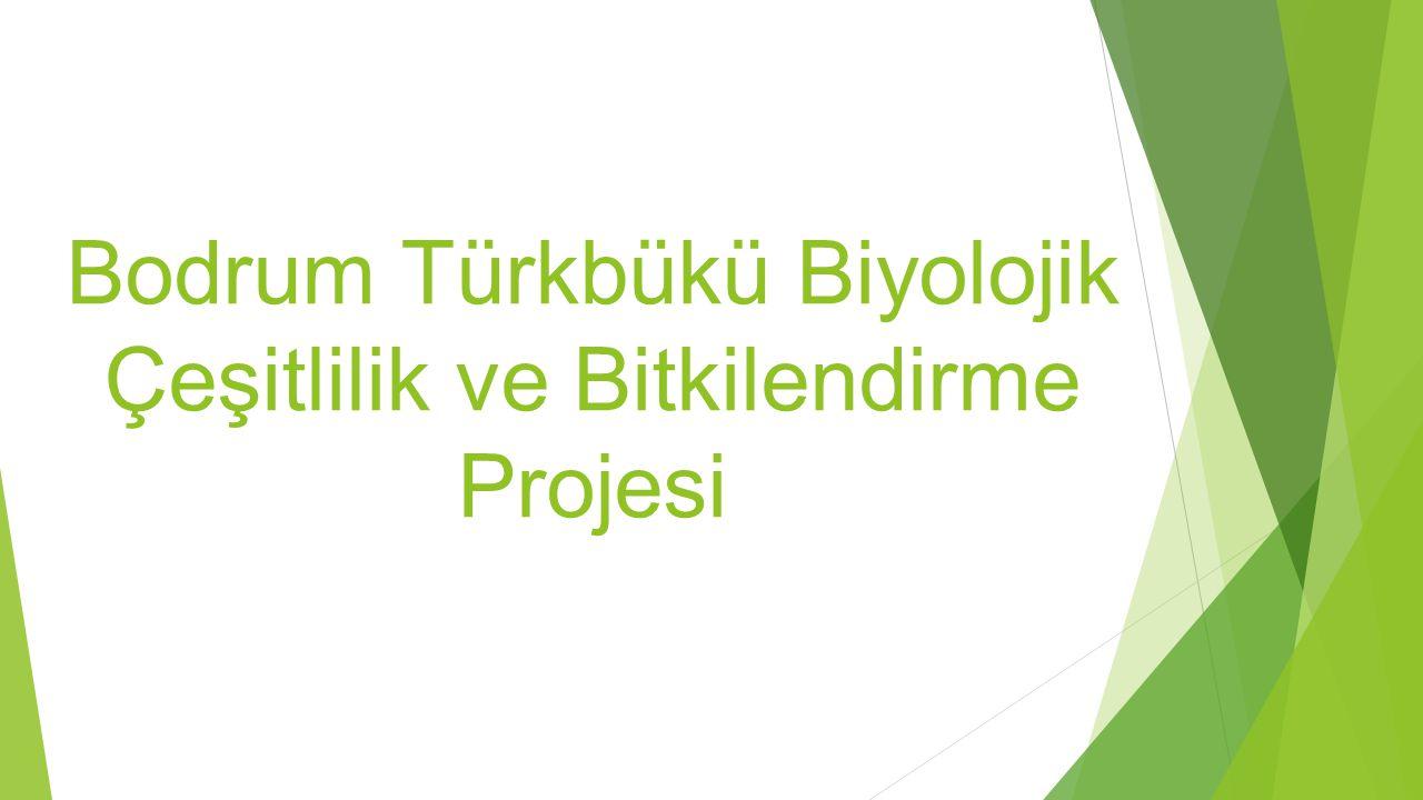 Bodrum Türkbükü Biyolojik Çeşitlilik ve Bitkilendirme Projesi