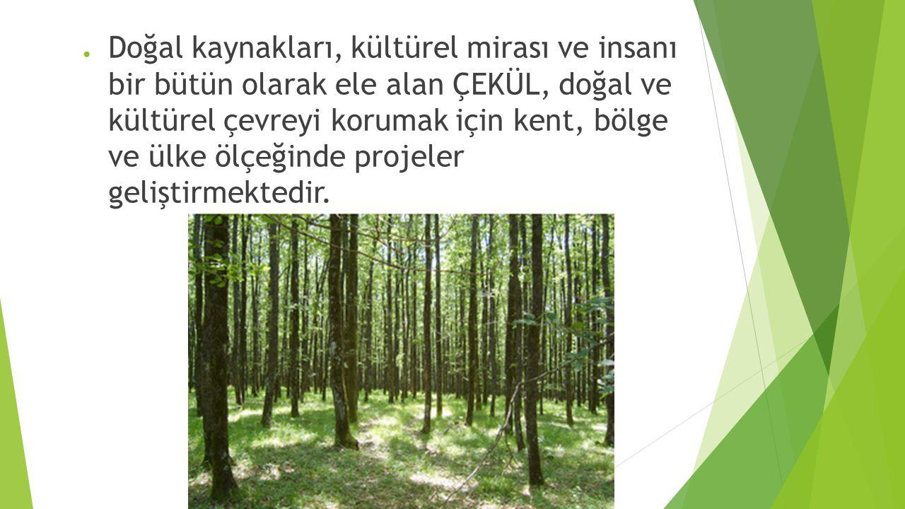 Doğal kaynakları, kültürel mirası ve insanı bir bütün olarak ele alan ÇEKÜL, doğal ve kültürel çevreyi korumak için kent, bölge ve ülke ölçeğinde projeler geliştirmektedir.