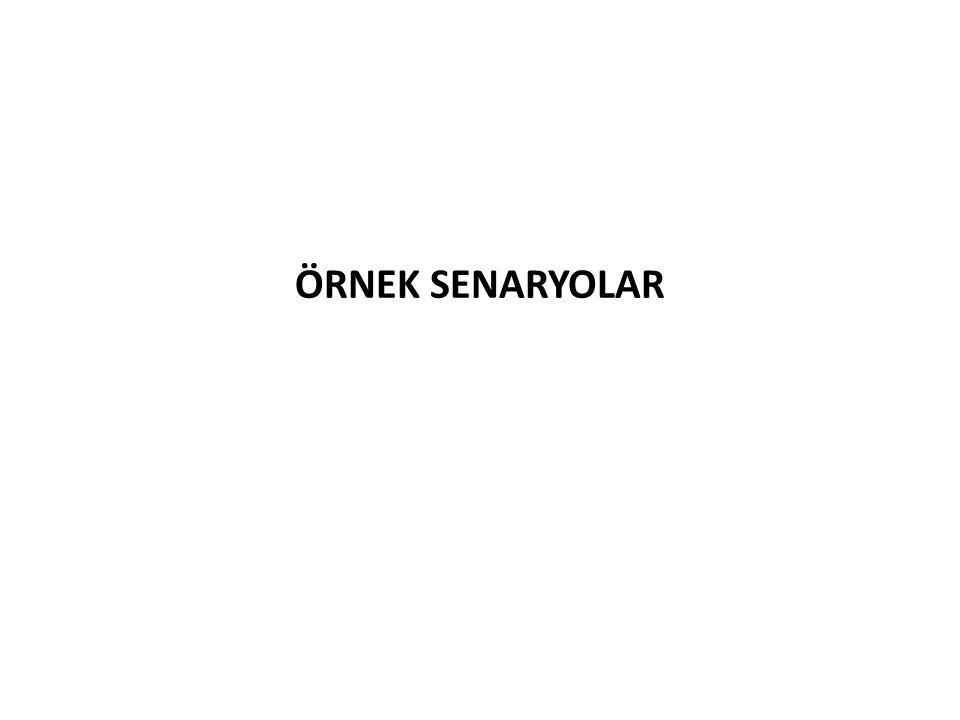 ÖRNEK SENARYOLAR