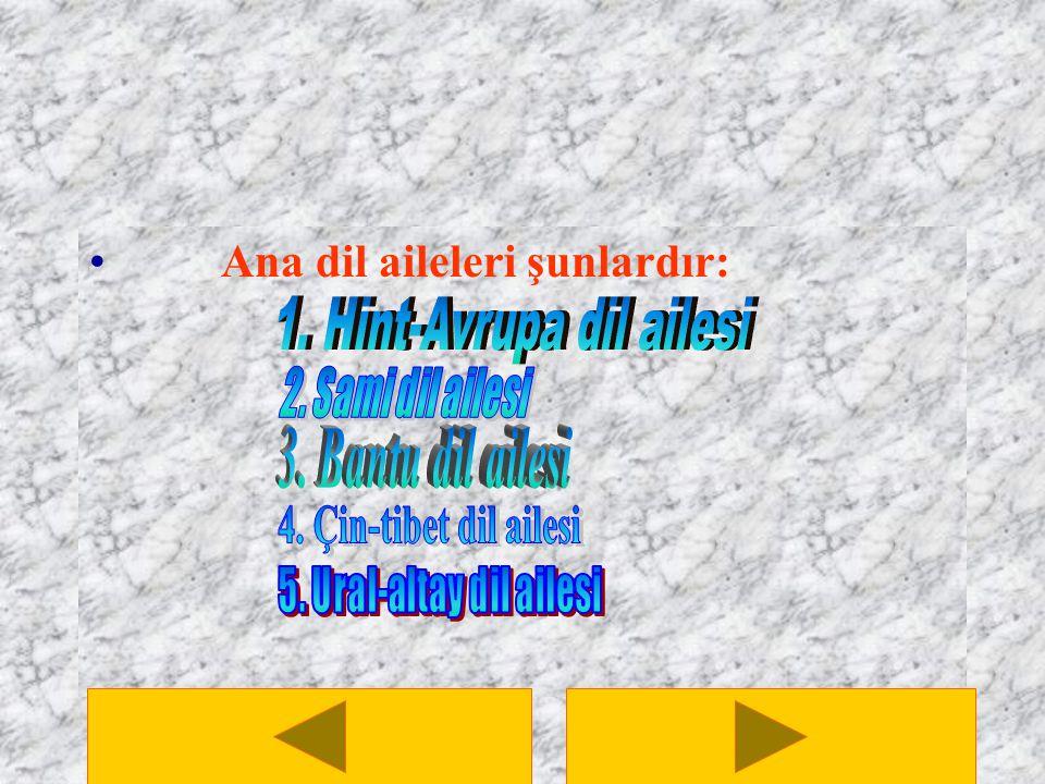 1. Hint-Avrupa dil ailesi