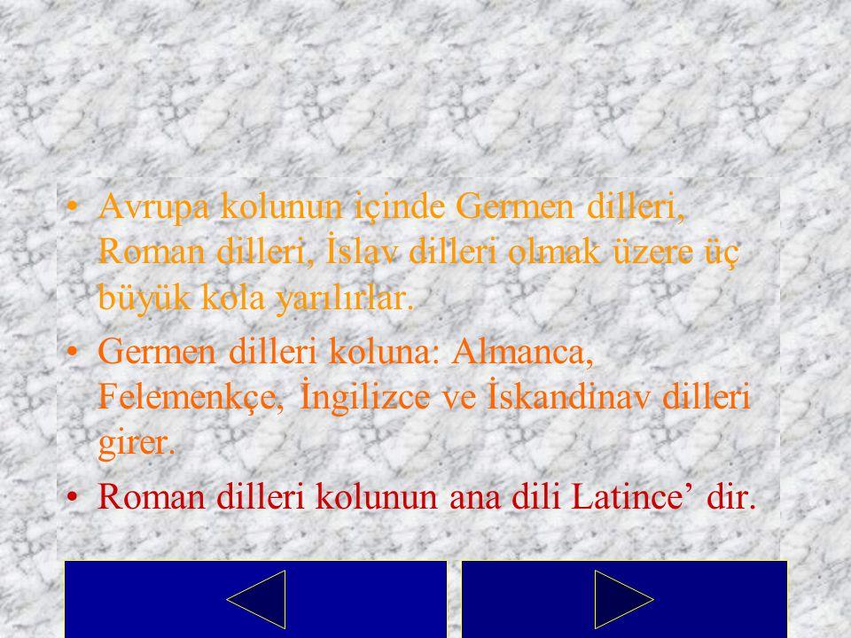 Avrupa kolunun içinde Germen dilleri, Roman dilleri, İslav dilleri olmak üzere üç büyük kola yarılırlar.