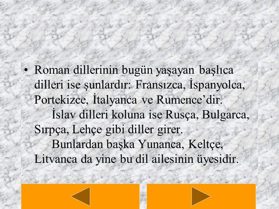 Roman dillerinin bugün yaşayan başlıca dilleri ise şunlardır: