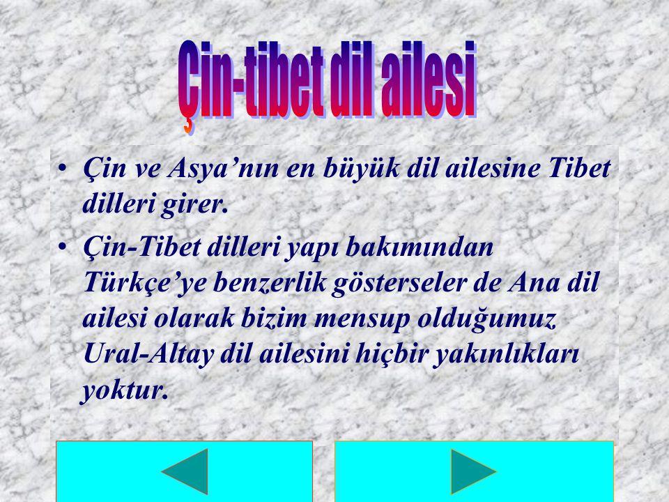 Çin-tibet dil ailesi Çin ve Asya'nın en büyük dil ailesine Tibet dilleri girer.