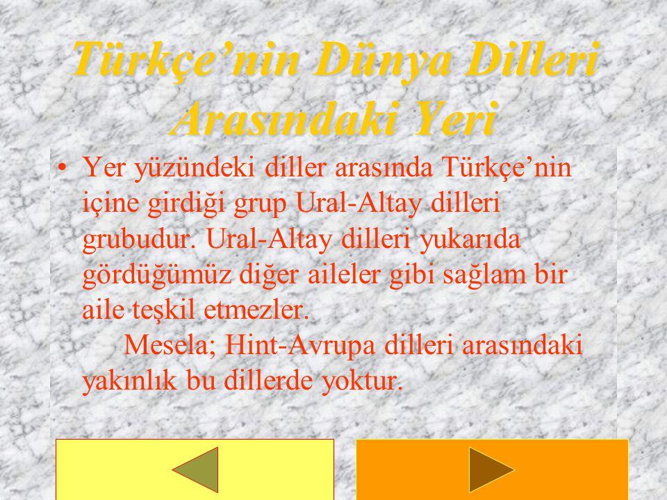 Türkçe'nin Dünya Dilleri Arasındaki Yeri