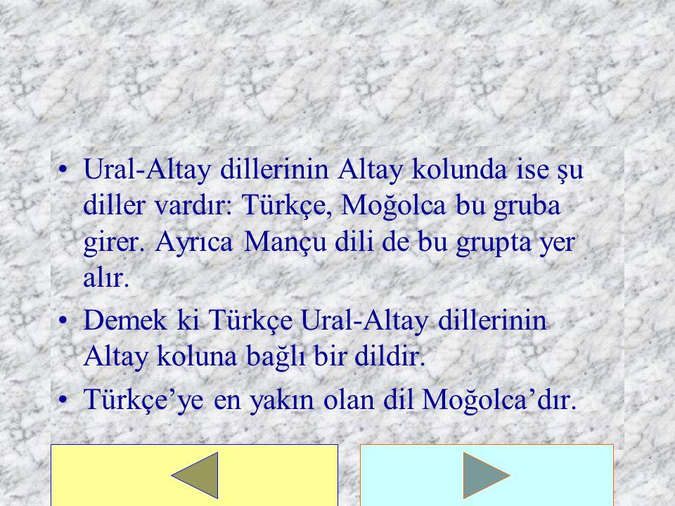 Ural-Altay dillerinin Altay kolunda ise şu diller vardır: Türkçe, Moğolca bu gruba girer. Ayrıca Mançu dili de bu grupta yer alır.