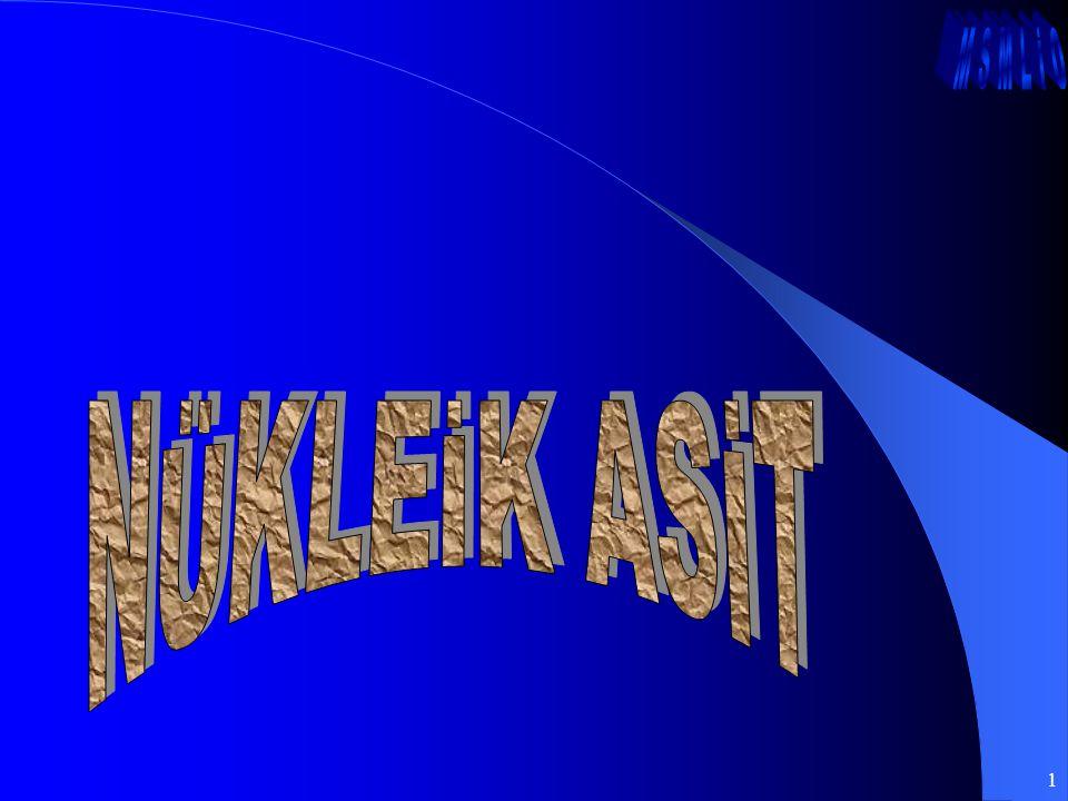 NÜKLEİK ASİT