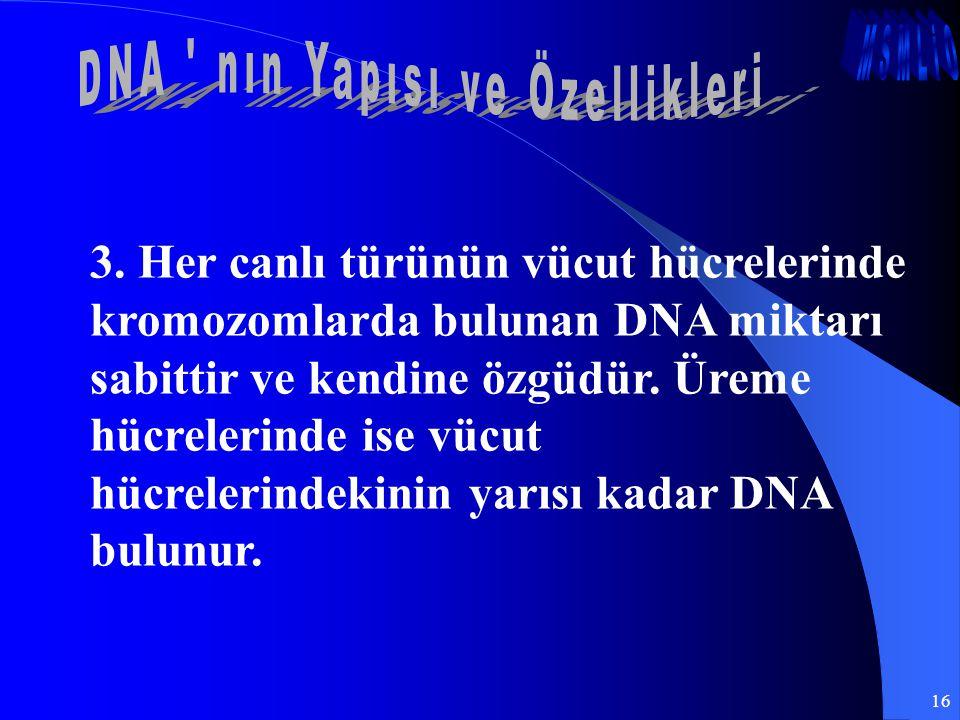 DNA nın Yapısı ve Özellikleri