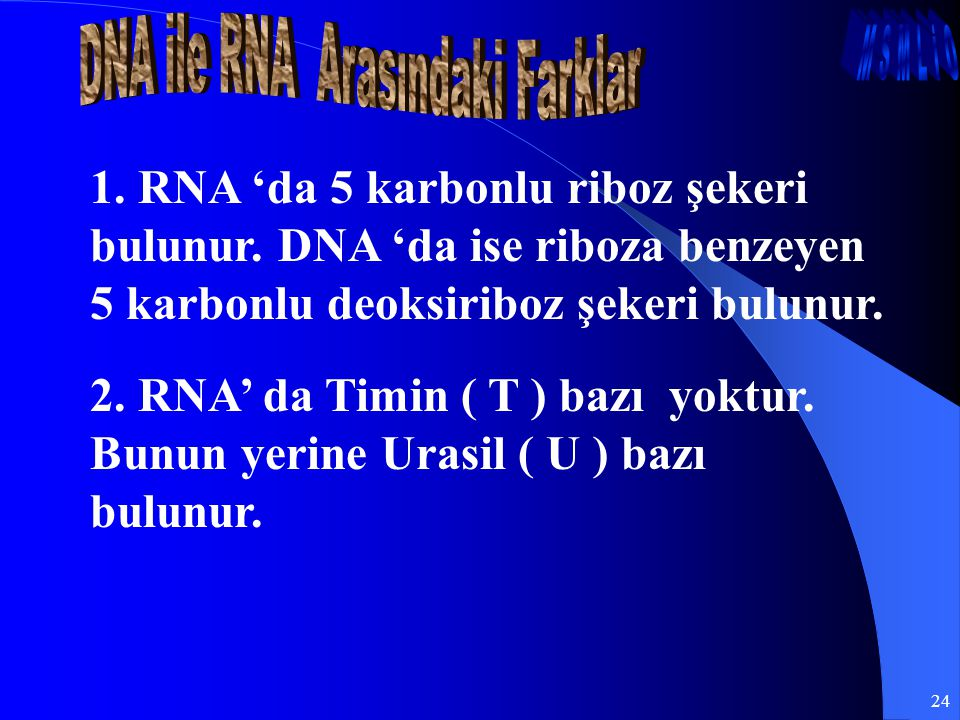 DNA ile RNA Arasındaki Farklar