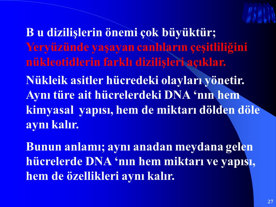 B u dizilişlerin önemi çok büyüktür; Yeryüzünde yaşayan canlıların çeşitliliğini nükleotidlerin farklı dizilişleri açıklar.