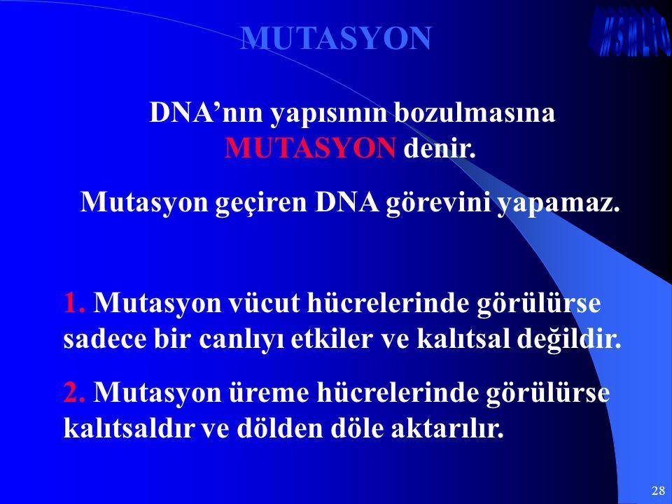 MUTASYON Mutasyon geçiren DNA görevini yapamaz.