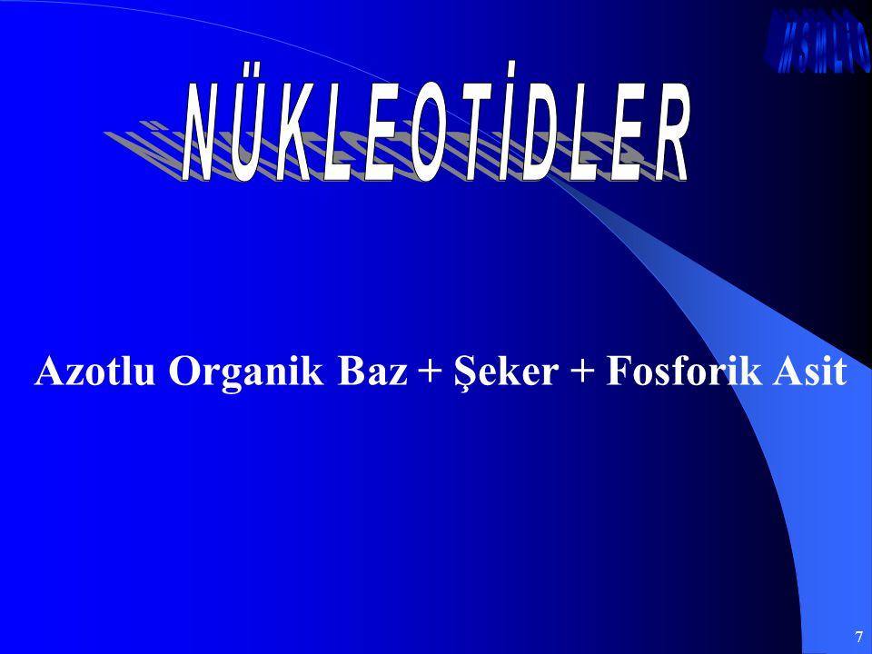 Azotlu Organik Baz + Şeker + Fosforik Asit