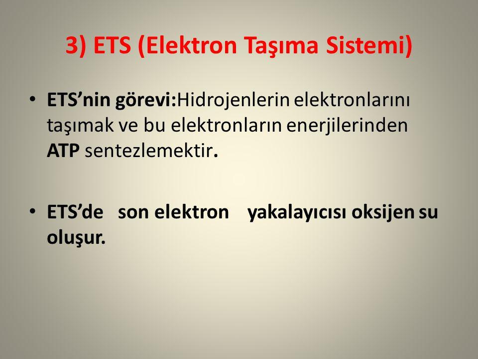 3) ETS (Elektron Taşıma Sistemi)