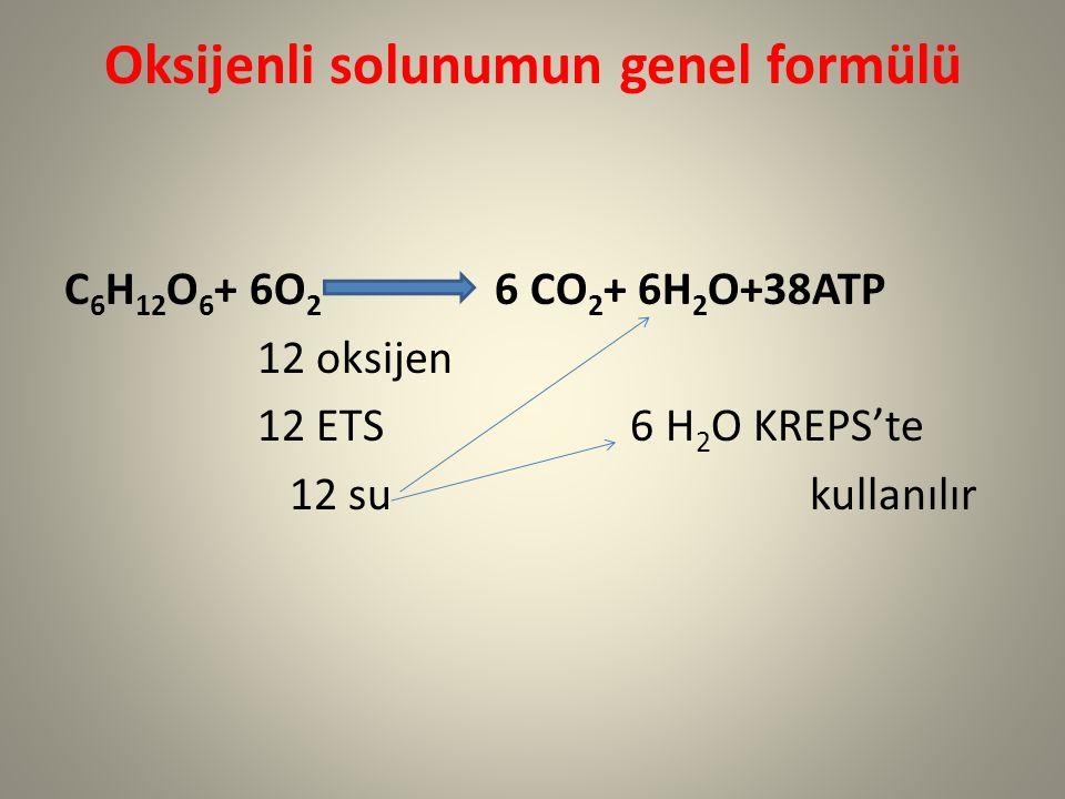 Oksijenli solunumun genel formülü