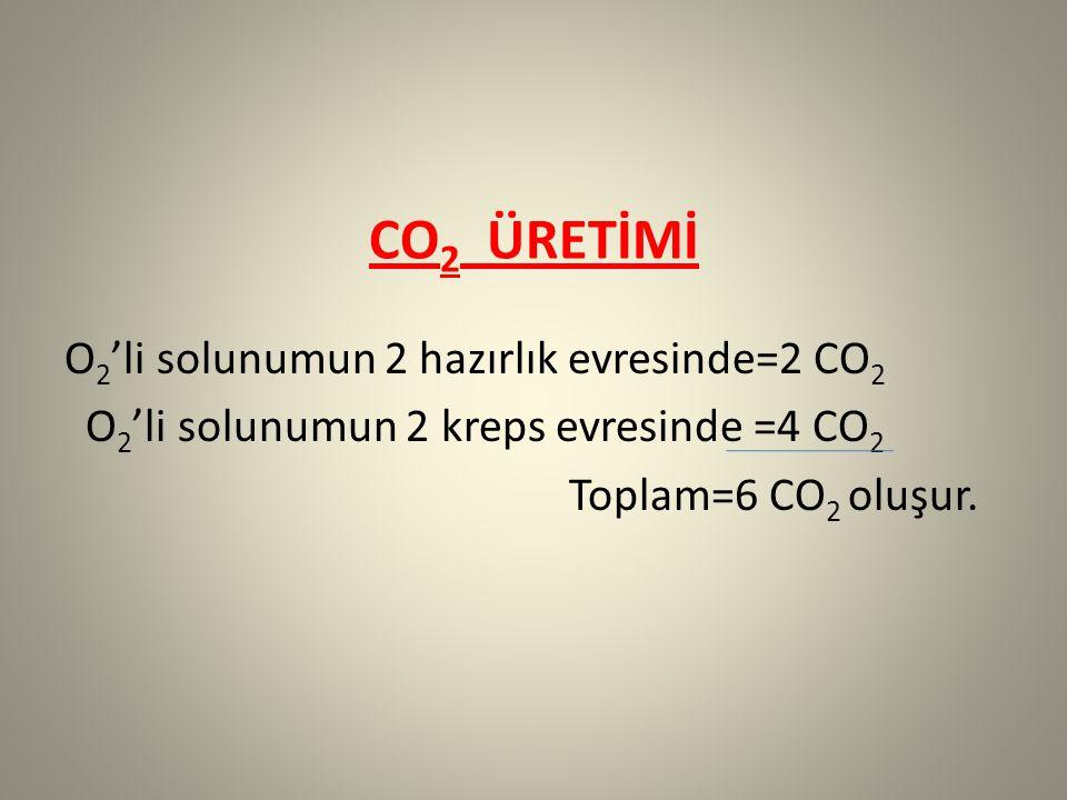 CO2 ÜRETİMİ O2'li solunumun 2 hazırlık evresinde=2 CO2