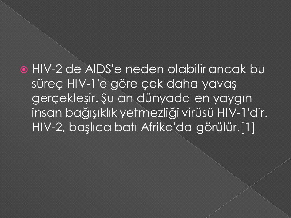 HIV-2 de AIDS e neden olabilir ancak bu süreç HIV-1 e göre çok daha yavaş gerçekleşir.