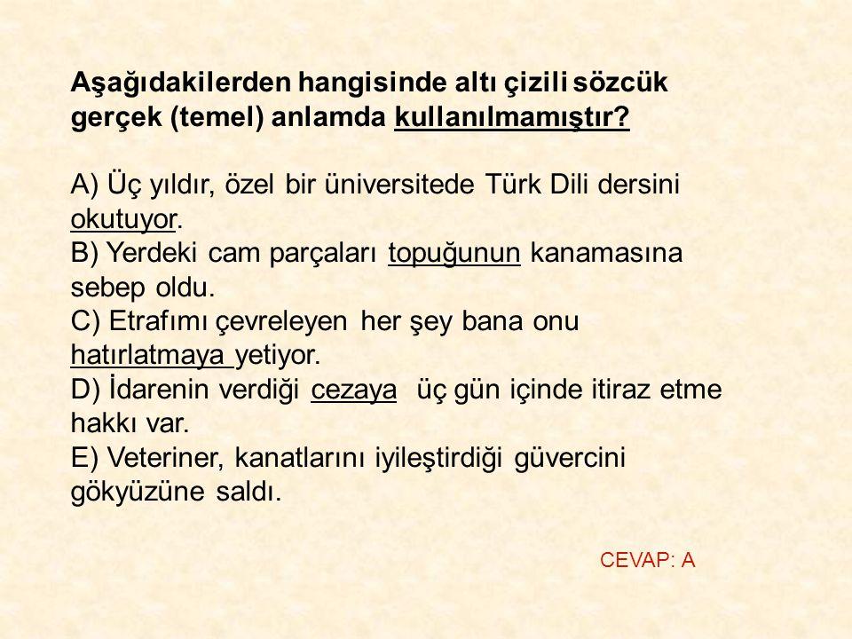 A) Üç yıldır, özel bir üniversitede Türk Dili dersini okutuyor.