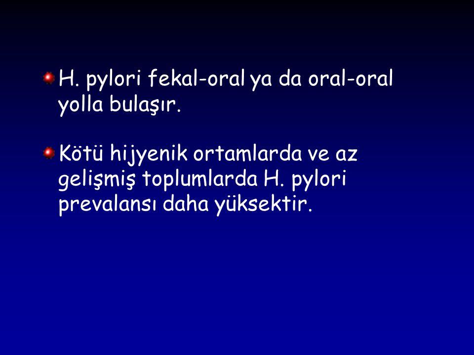 H. pylori fekal-oral ya da oral-oral yolla bulaşır.