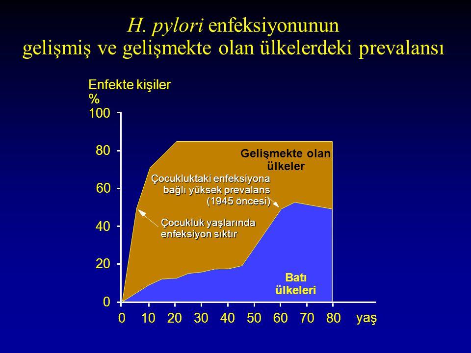 H. pylori enfeksiyonunun gelişmiş ve gelişmekte olan ülkelerdeki prevalansı