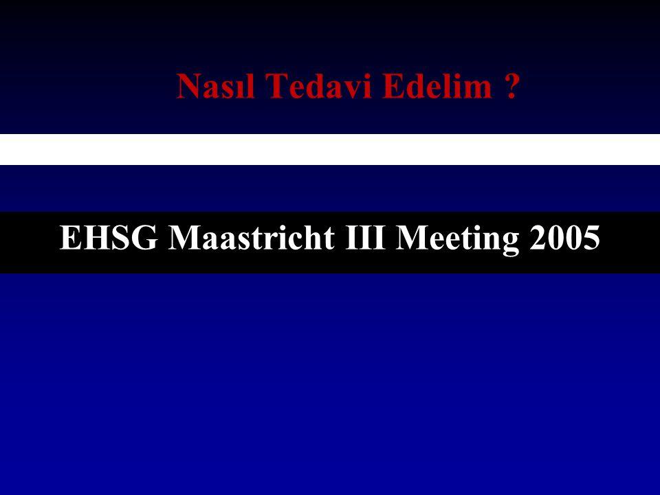 EHSG Maastricht III Meeting 2005