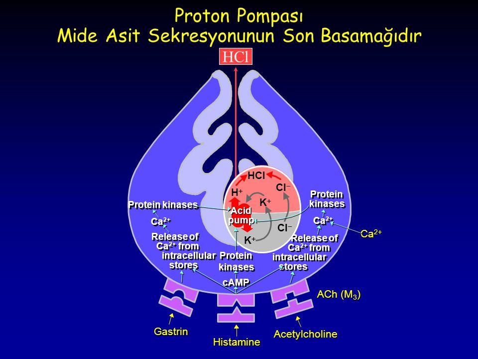 Proton Pompası Mide Asit Sekresyonunun Son Basamağıdır